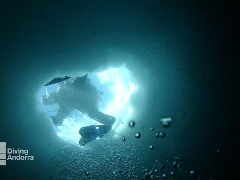 http://www.boardbox.tv/ftp/notifotos/diving.jpg